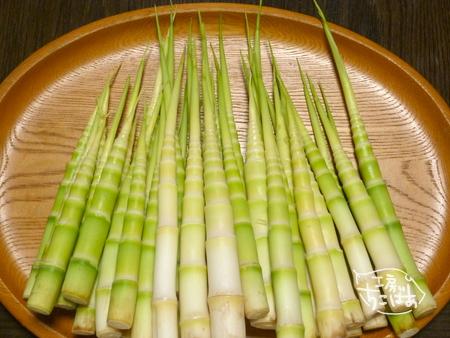 山形産の姫竹