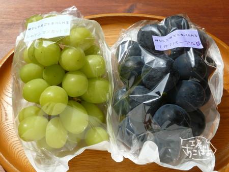 果物の宝石、ブドウたち